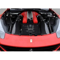 """Ferrari F12 Berlinetta - DMC Carbon fiber motorplastkåpa """"Spia"""""""